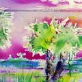 Palm Sunrise by Carliss Prosser