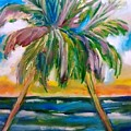 Palm Tree Color Times Two by Patricia Taylor