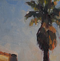 Palm Tree In Winter Light by Merle Keller