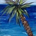 Palm Tree by Jamie Frier