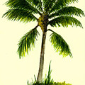 Palm Tree Number 1 by Michael Vigliotti