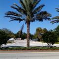 Palm Tree Psl. by Dutch MARCHING