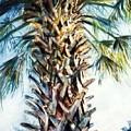 Palm Tree by Robin Maria Pedrero