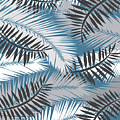 Palm Trees 10 by Mark Ashkenazi
