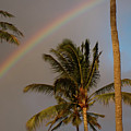 Palm Trees And Rainbow by Roger Mullenhour