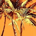 Palm Trees In Sepia by Patricia Rachidi