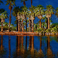 Palm Trees On The Water by Kirt Tisdale