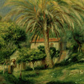 Palm Trees by Pierre Auguste Renoir