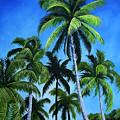 Palm Trees Under A Blue Sky by Juan Alcantara