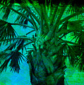 Palm Visions by Susanne Van Hulst