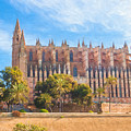 Palma Cathedral D40180 by Kevin Funk