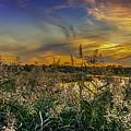 Palmer River At Sunset by Raymond J Deuso