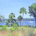 Palmetto Bluff Backyard by Candace Lovely