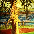 Palmetto Tree by Carliss Prosser