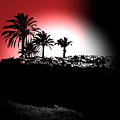 Palms Black White Red by Gary Henderson
