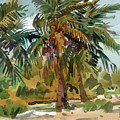 Palms In Key West by Donald Maier