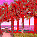 Palms In Red by Debra Martz