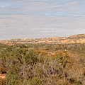 Palo Duro Canyon Valley by Susan Rissi Tregoning
