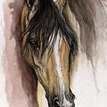 Palomino Arabian Horse Watercolor Portrait by Angel Ciesniarska