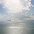 Palomino Island by Gilbert