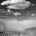 Palouse Field 2918 by Bob Neiman