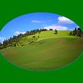 Palouse - Landscape - Transparent by Nikolyn McDonald