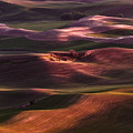 Palouse Undulation by Wes and Dotty Weber