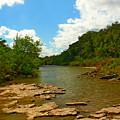 Paluxy River by Robert Brown