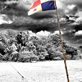 Panama Flag At Red Frog Beach by John Rizzuto
