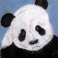 Panda by Arlene  Wright-Correll