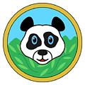 Panda Bear Head by Miroslav Nemecek