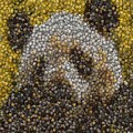Panda Coin Mosaic by Paul Van Scott