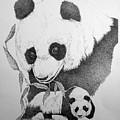 Panda Collage by Lucien Van Oosten