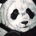 Panda by Debra Sandstrom