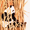 Panda In Bamboo by Linda Crockett