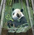 Panda Love by Susanna Katherine