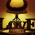 Paniolo Love by Pamela Walton