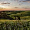 Pano - Flint Hills Sunset   by Scott Bean