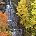 Panorama Fall Color Chapel Falls Upper Penninsula Mi by Dave Welling