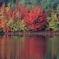 Panorama Fall Color Moccasin Lake Upper Peninsula Mi by Dave Welling