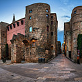 Panorama Of Ancient Roman Gate And Placa Nova In The Morning, Ba by Andrey Omelyanchuk