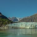 Panorama Of Glacier Bay, Alaska by Brenda Jacobs