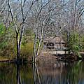 Panorama Of Lake, Trees And Cabin by Joe Benning