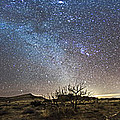 Panorama Of Milky Way And Zodiacal by Alan Dyer