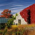Panorama Of New Modern Building At Toronto Botanical Garden In E by Reimar Gaertner