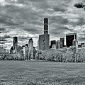 Panorama Of New York City by Alex Galkin