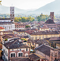 panorama of old town Lucca, Italy by Ariadna De Raadt