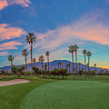 Panorama Palm Springs Golfing by Scott Campbell