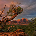 Panorama Storm Back Of Zion Near Hurricane Utah by Dave Welling