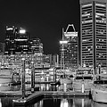 Panoramic Baltimore In Black And White by Frozen in Time Fine Art Photography